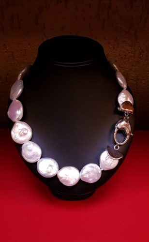 coin parel collier met zilver slot en element